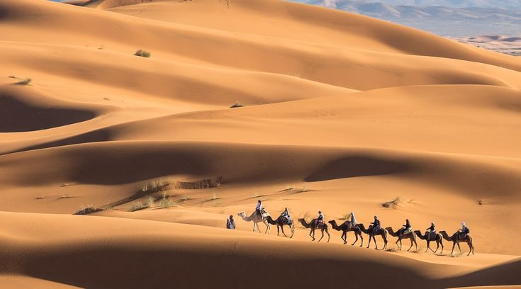 Start your private desert tour from Marrakech, spend few nights in Erg Chigaga dunes and finish your tour in Agadir.…