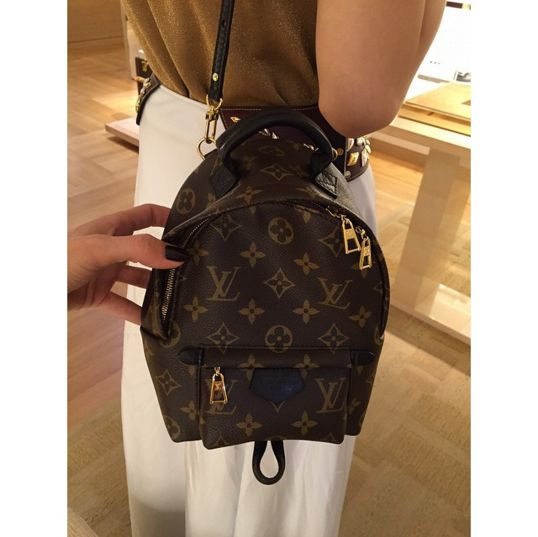 Louis Vuitton Monogram Canvas Palm Springs Backpack Mini Bag 2