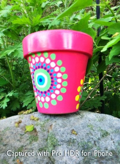 Painted flower pot - good idea