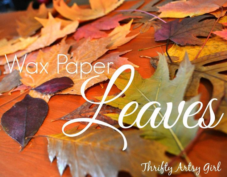 I remember doing this in kindergarten! - How to Easily Preserve Fall Leaves With an Iron and Wax Paper