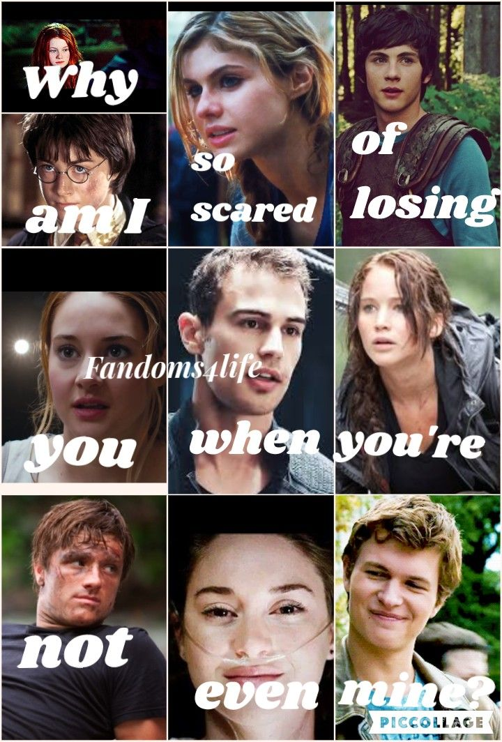Harry Potter, Percy Jackson, Divergent, The Hunger Games, TFIOS.