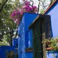 Love Mexican art? Discover Frida and Diego in Mexico City: Casa Museo Frida Kahlo