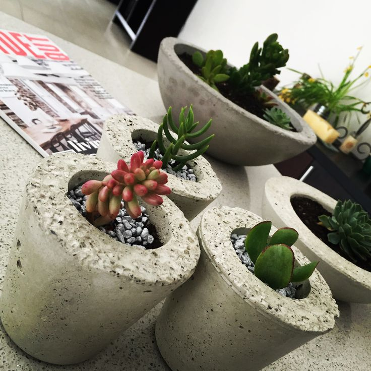 We love Succulents at Tojo Artifacts, they look awesome in our pots. #concretepots #decor #succulents #succulove