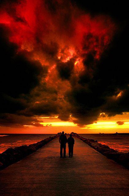 Nature (Apocalypse - La Mort de Gaïa) by Tiquetonne2067, via Flickr ~ France