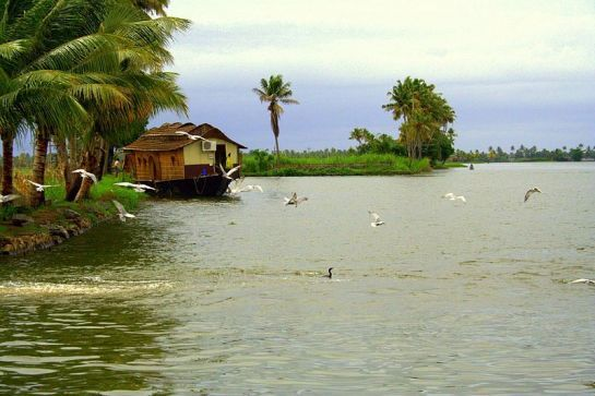 "Alleppey (Kerala, India) - the land of lagoons, leisure and tranquility is appropriately named the ""Venice of the East"" http://www.nativeplanet.com/alleppey/"