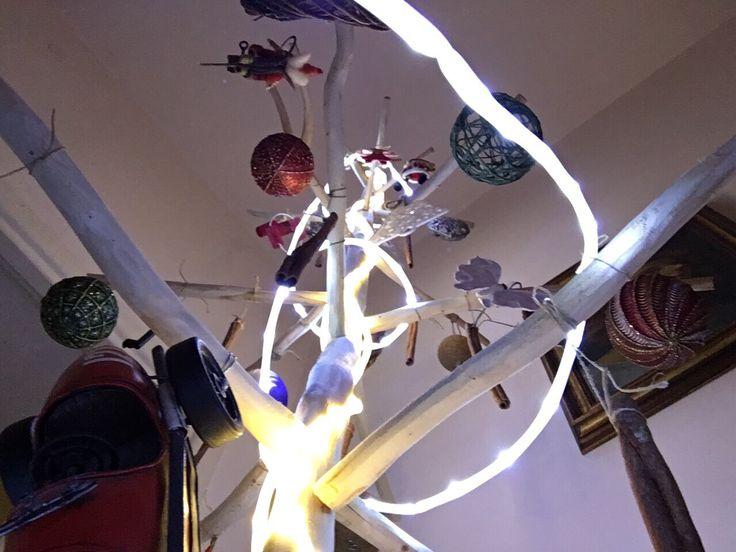 details Christmas Tree 2015 - Alan Bianchi