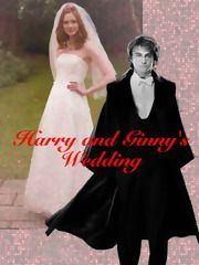 Harry and Ginny's Wedding, a harry potter fanfic | FanFiction
