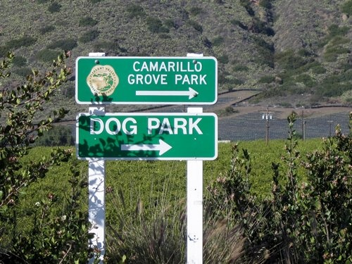 17 Best Images About Camarillo Shopping Amp Entertainment On