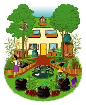79 best garden permaculture layouts images on pinterest 10 diy permaculture ideas solutioingenieria Choice Image