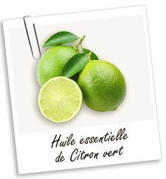 Huile essentielle Citron vert Aroma-Zone