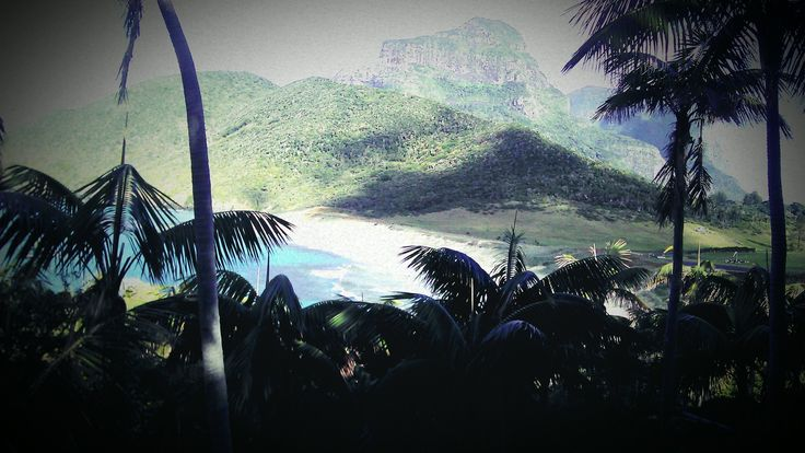 View of Blinky Beach from Transit Hill, Lord Howe Island