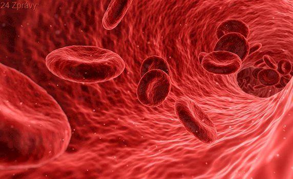 Zajímavosti o zázračné tekutině jménem krev. Víte, který kdo si nechal vlastní krví napsat korán?