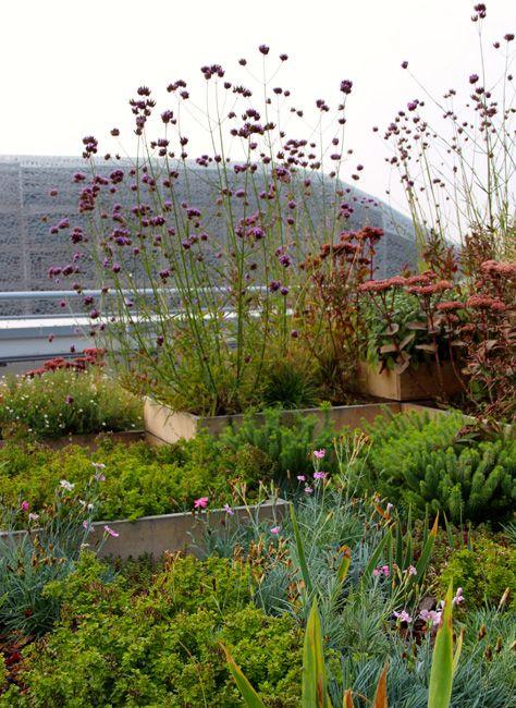 Les 164 meilleures images propos de balcon jardin suspendu sur pinterest jardins toits - Jardin suspendu paris argenteuil ...