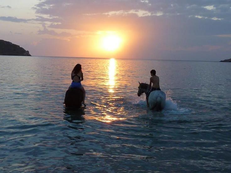Horseback Riding on the Island of Syros via the Equestrian Club of Cyclades