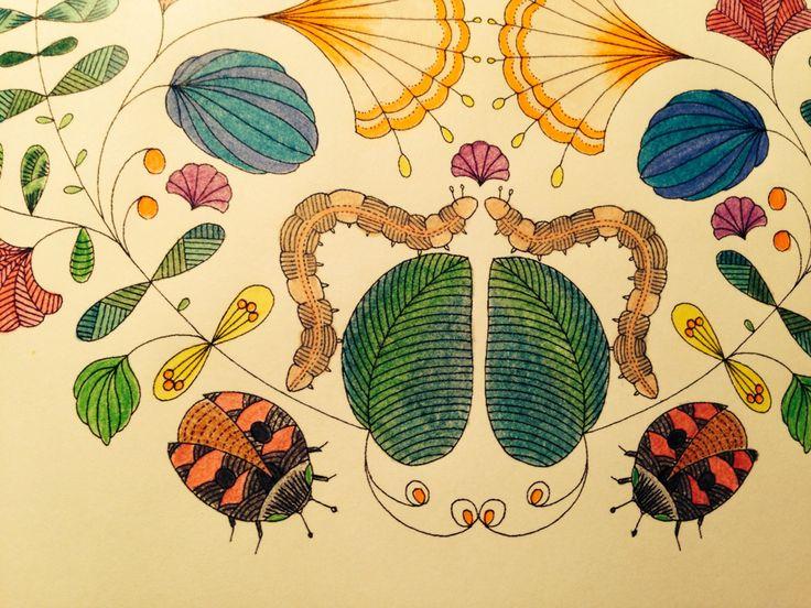 Millie Marotta Coloring BooksColouringAnimal KingdomAnimalesVintage