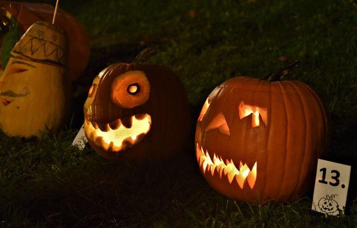 say Hi to pumpkins