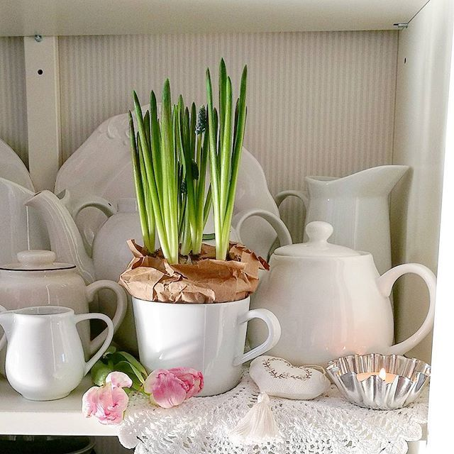 U mnie wreszcie od rana słońce, a w domu zwiastuny wiosny 💐🌷🌹 #flowerslovers #myhome #scandi #nord #vintage  #sundaymorning #shabby #interior #white #porcelain #tv_stilllife #stilllifegallery
