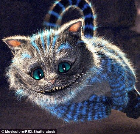 26 best cheshire images on pinterest   cheshire cat, alice in