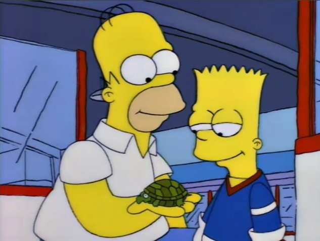 Here's your turtle, alive and well.Simpsons Pinterest, Simpsons Boards, Well, Turtles Al, Simpsons Fans, Alive, Classic Simpsons