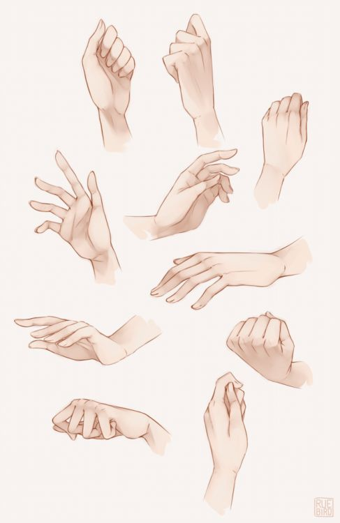 Hands drawing references