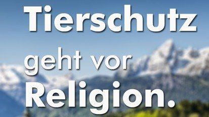 Angeblich die Geschöpfe Gottes. Die Menschen leben ihre Religion ja doch nur in Scheinheiligkeit und Verlogenheit.