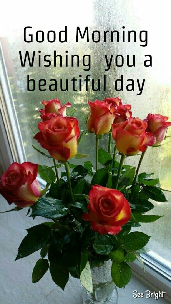 Good Morning Good Morning Greetings Good Morning Flowers