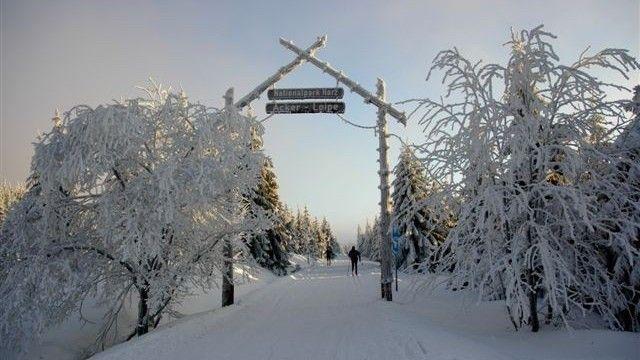 Vintern i Harzen – oplevelser for stor og lille