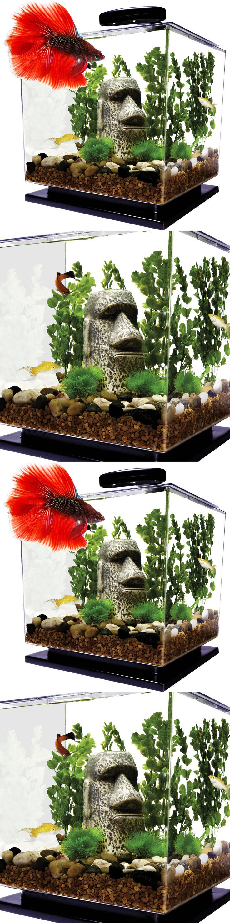 Aquarium fish tank complete system - Aquariums And Tanks 20755 Cube Aquarium Betta Fish Tank System Acrylic 3 Gallon Water Filter Led Light Set Buy It Now Only 46 91 On Ebay