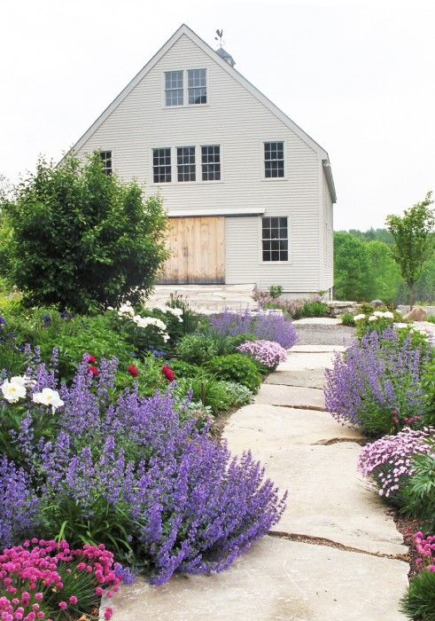 Like how the Catmint (Nepeta X faassenii 'Walker's low') sprawls casually onto the walk - Ann Kearsley Design - - Learn how to design your own walkway or garden path at http://gardendesignforliving.com/?page_id=74