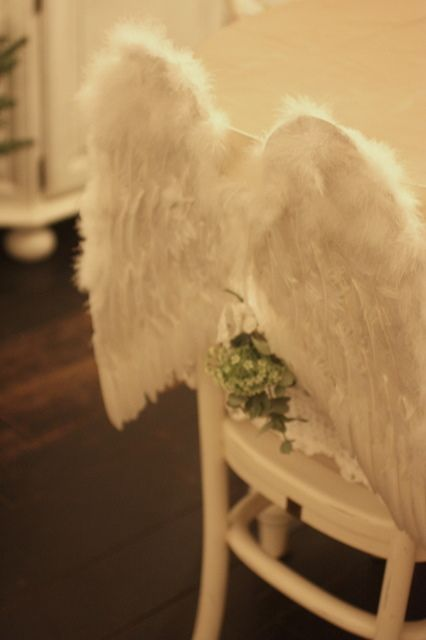 24Homes Christmas Decor - Feathered Wings  www.24Homes.blogspot.com
