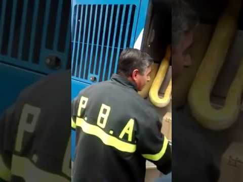 VIDEO: Abrieron la baulera del micro y encontraron una pitón de dos metros: Se trata de una serpiente birmana albina, la especie hallada en…