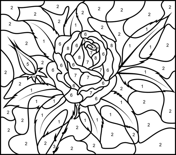rose printable color by number page hard free coloringadult