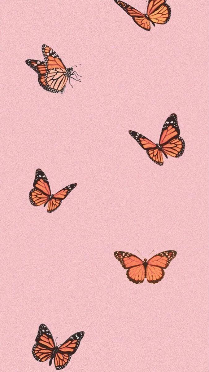 Butterfly Aesthetic Butterfly Wallpaper Iphone Butterfly Wallpaper Vintage Collage