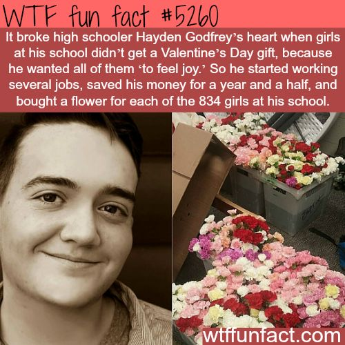 This boy gave flowers to all the girls in his high school - WTF fun facts