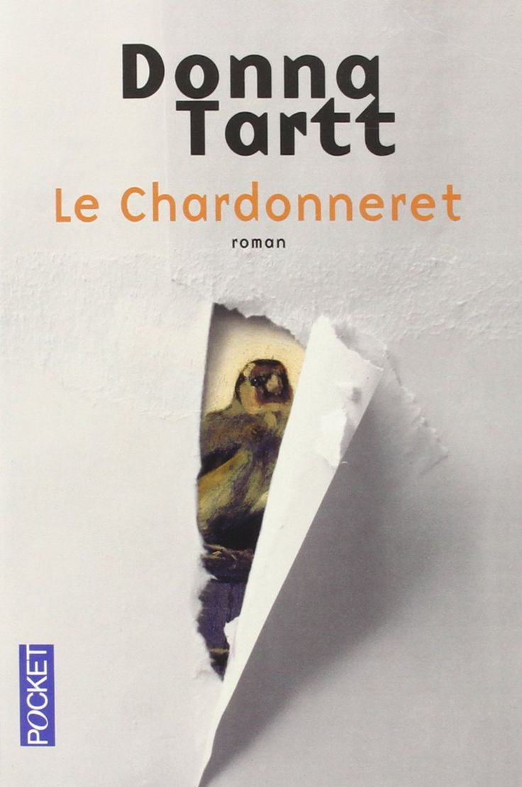 Amazon.fr - Le Chardonneret - Donna TARTT, Edith SOONCKINDT - Livres