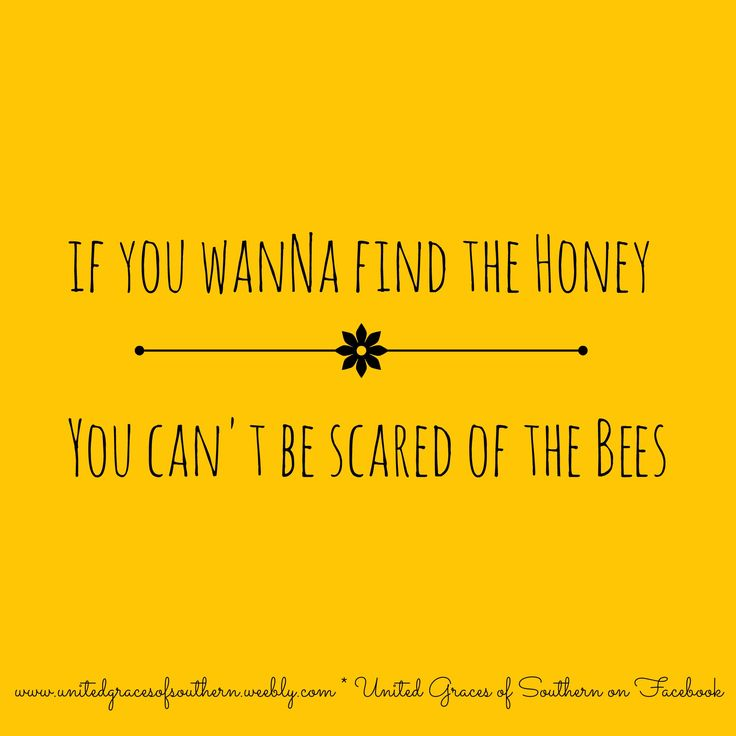 If You Want To Find The Honey - You Can't Be Scared of the Bees - lyrics to Silver Lining, Kacey Musgraves