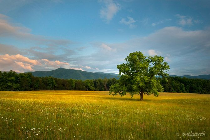 http://amolife.com/image/around-the-world/great-smoky-mountains-national-park-by-james-duckworth.html