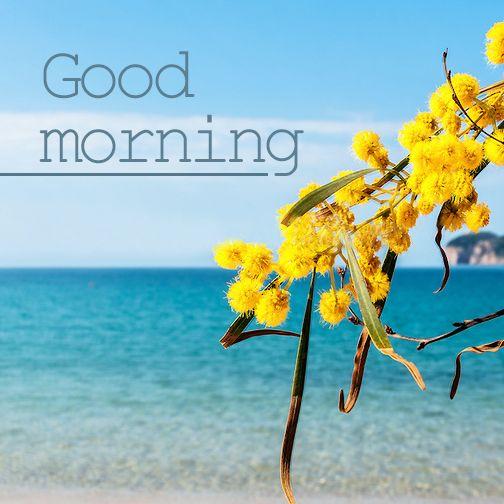Καλημέρα και καλή εβδομάδα. Το καλοκαίρι πλησιάζει και οι πρώτες καλοκαιρινές εικόνες περνάνε από το μυαλό μας…!!!