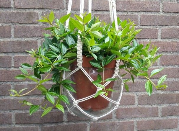 Lindevrouwsweb: Macrame Plantenhanger