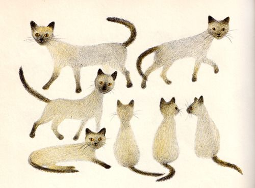 "From ""The Mouse Palace,"" by Frances Carpenter, illustration by Adrienne Adams."