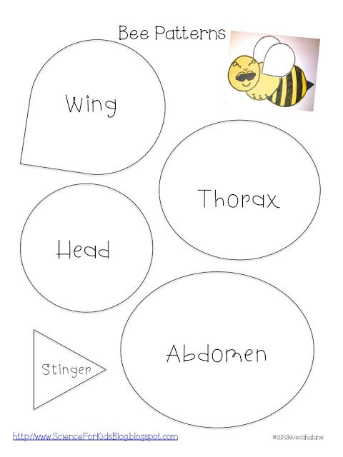Science for Kids: Honey bees:  Use bubble wrap for wings instead of paper. Have the children add eyes - 2 Big, 3 Small