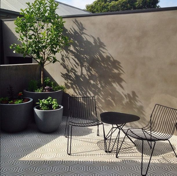 Shadow play in the courtyard makes for some summery silloettes! On site shooting in Surrey Hills with @sharyncairns Gorgeous foliage @benscott_design #mimdesignresidential