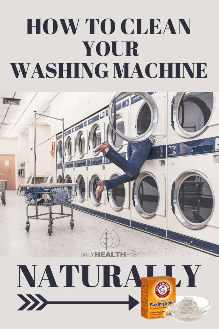 mold in washing machine dangerous
