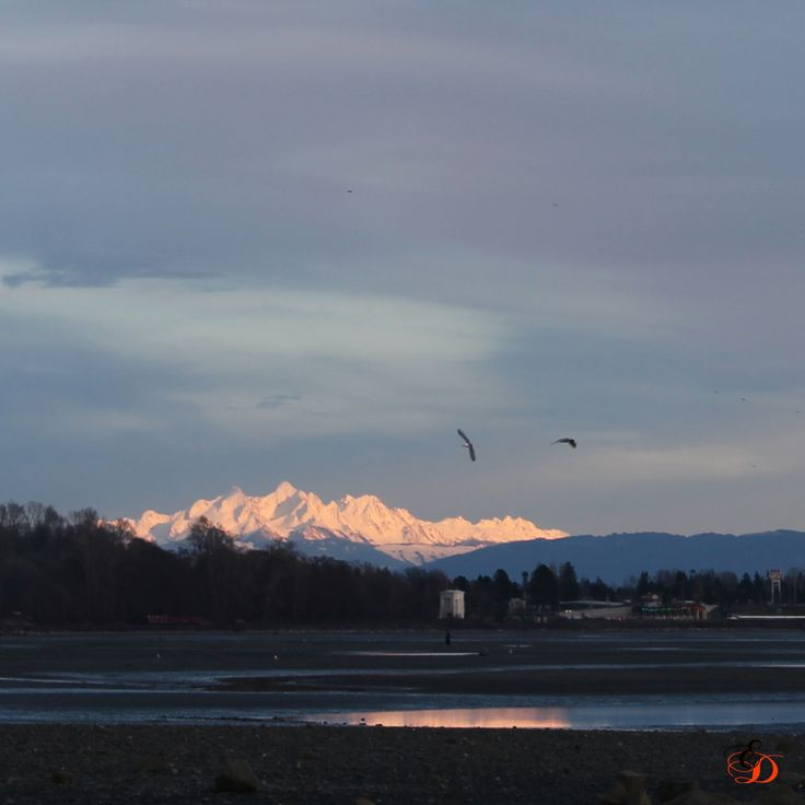 This is looking toward the Peace Arch border crossing across Semiahmoo Bay with Mount Baker in the background.