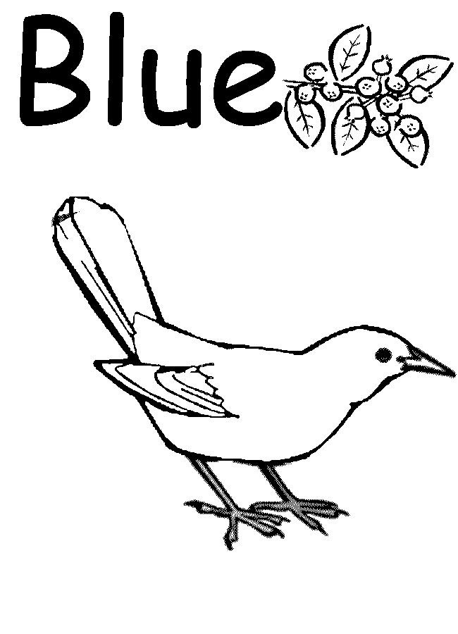 colors coloring pages for preschool Google Search