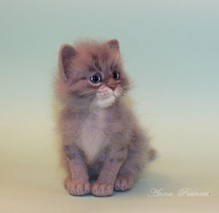 "Gallery.ru / Фото #6 - котёнок ""Тим"" - Anna Petinati"