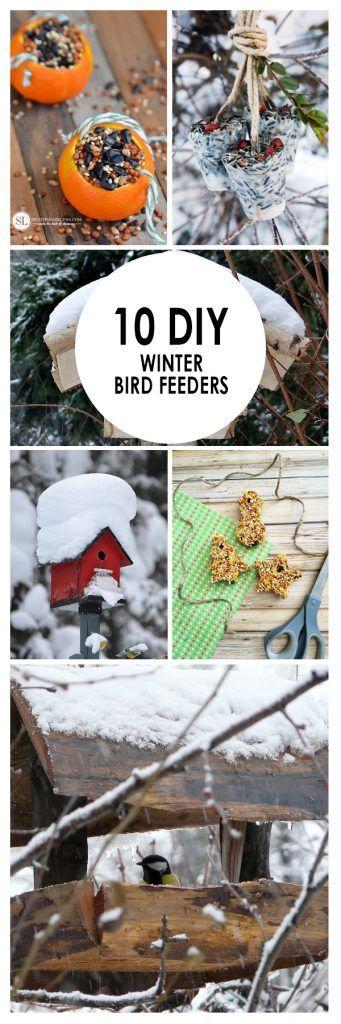 Winter Birdfeeders, Winter Gardening, Winter Gardening Tips, Gardening  Hacks, Cold Weather Gardening