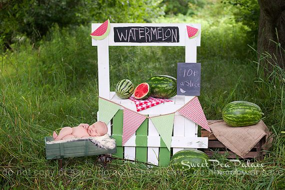 Newborn Baby Child Photography Prop Digital Backdrop for Photographers Watermelon Stand