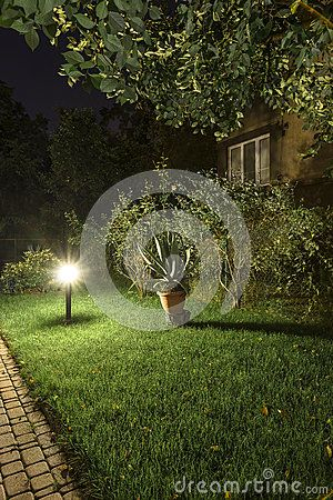 Backyard Garden  Path Brick with Lights at night  with grass,  trees .