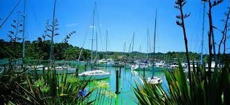 Image result for whangarei